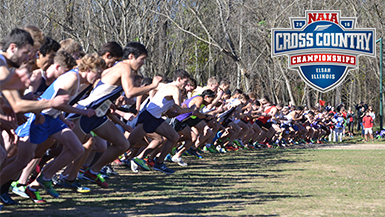 2016 NAIA XC National Championship Preview